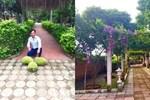 Nghệ sĩ Quang Tèo khoe khu vườn nhỏ muôn hoa đua sắc trước căn chung cư 7 tỷ đồng-11