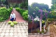 Quang Tèo - Giang Còi 1 đời đi diễn cùng nhau, về già mua nhà vườn trồng rau, dưỡng già