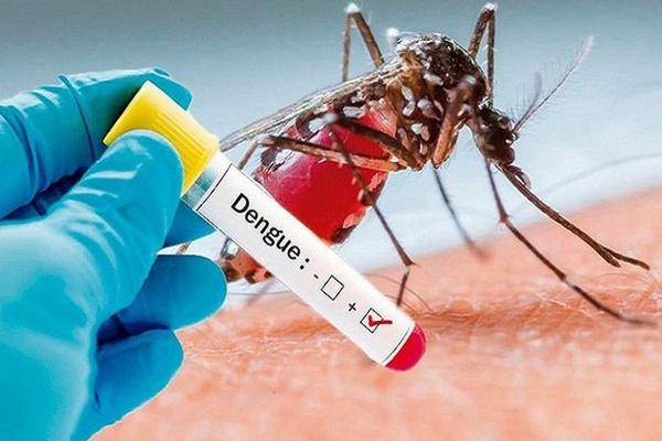 Hà Nội tăng mạnh ca mắc sốt xuất huyết, nhiều ổ dịch phức tạp-1