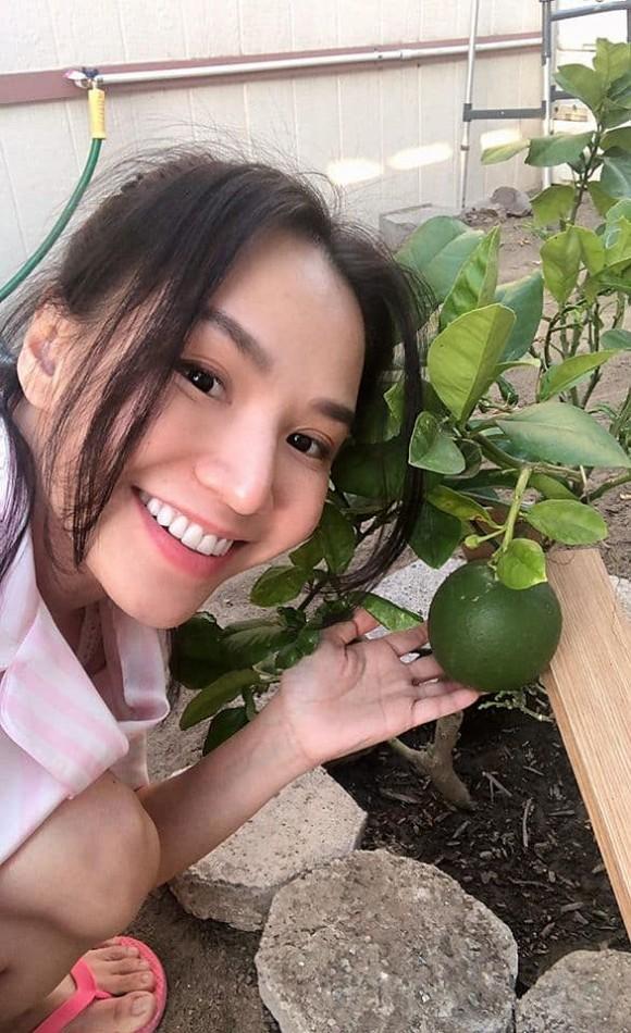 Khu vườn cây trái nhỏ xinh của vợ chồng Baggio ở Mỹ-5