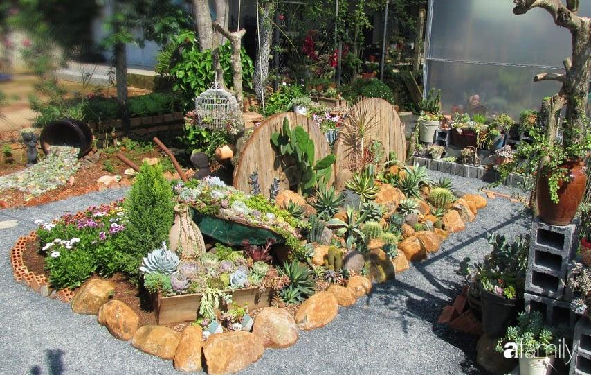 Chỉ tốn hơn 1 triệu đồng, mẹ trẻ biến hình mảnh đất nhỏ trở thành khu vườn trồng xương rồng, sen đá đẹp mê mẩn ở Đà Lạt-3