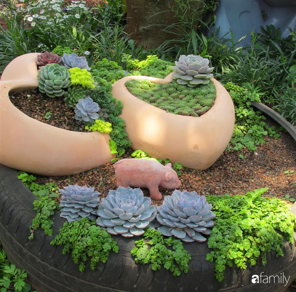 Chỉ tốn hơn 1 triệu đồng, mẹ trẻ biến hình mảnh đất nhỏ trở thành khu vườn trồng xương rồng, sen đá đẹp mê mẩn ở Đà Lạt-5