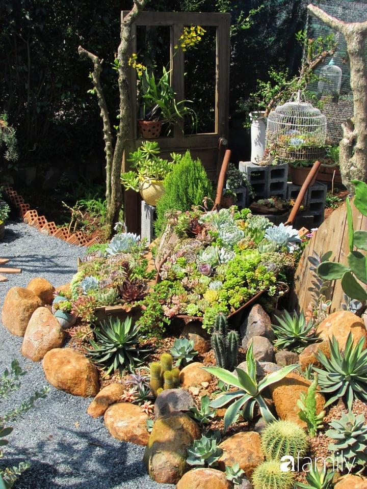 Chỉ tốn hơn 1 triệu đồng, mẹ trẻ biến hình mảnh đất nhỏ trở thành khu vườn trồng xương rồng, sen đá đẹp mê mẩn ở Đà Lạt-16