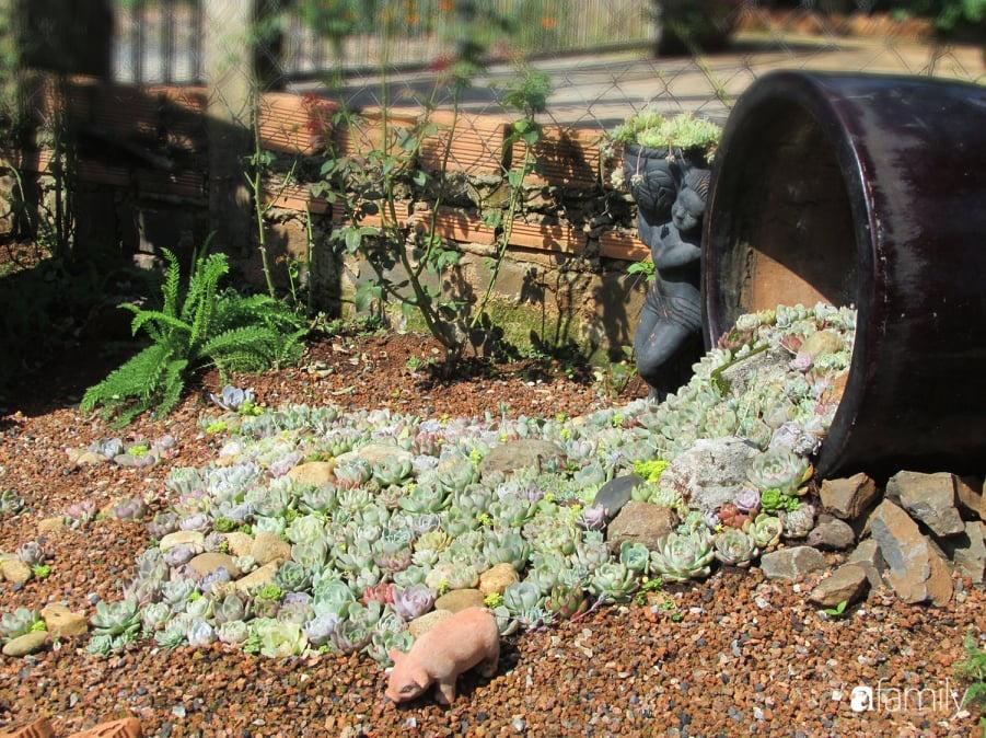 Chỉ tốn hơn 1 triệu đồng, mẹ trẻ biến hình mảnh đất nhỏ trở thành khu vườn trồng xương rồng, sen đá đẹp mê mẩn ở Đà Lạt-18
