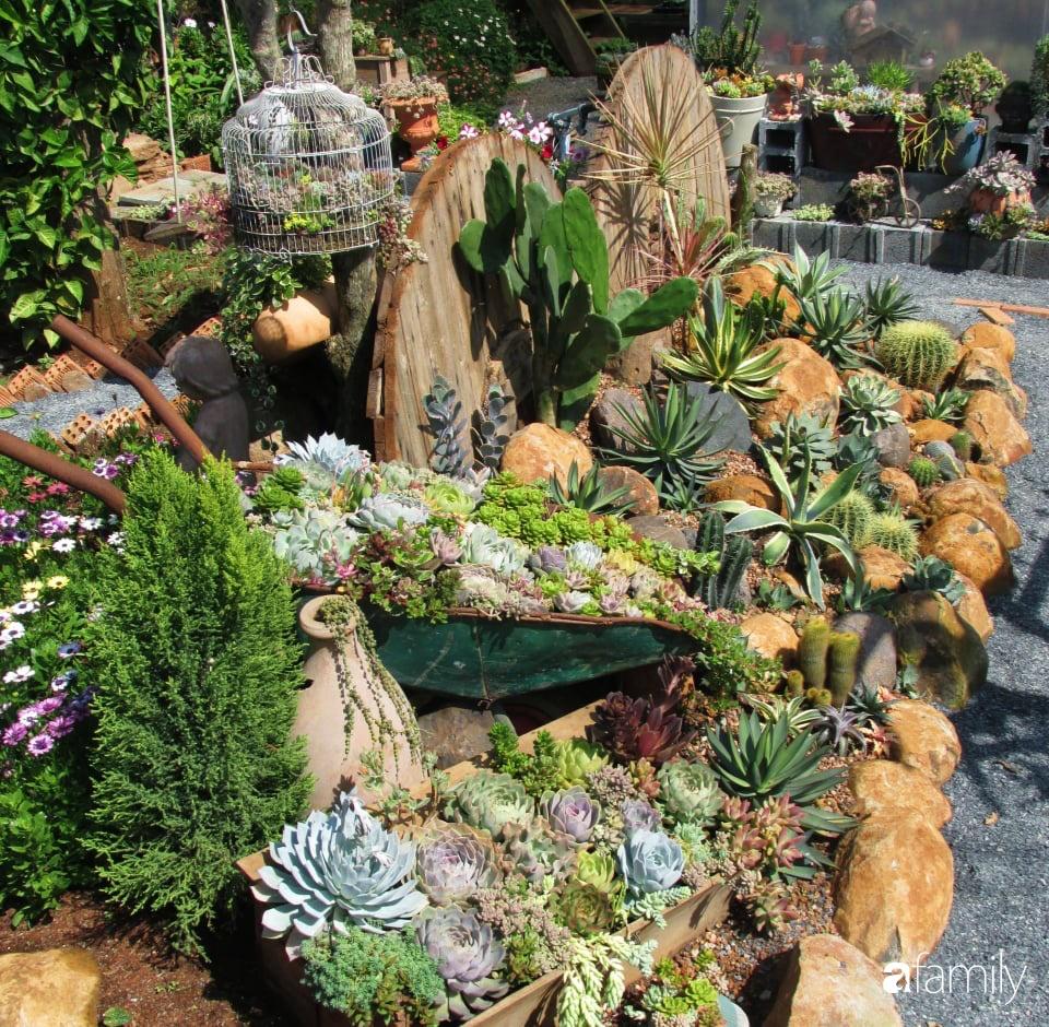 Chỉ tốn hơn 1 triệu đồng, mẹ trẻ biến hình mảnh đất nhỏ trở thành khu vườn trồng xương rồng, sen đá đẹp mê mẩn ở Đà Lạt-19
