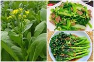Cách làm các món ăn từ rau cải ngồng chống ngán tuyệt ngon