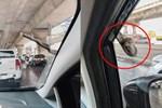 Đang lái ô tô, tài xế xanh mặt khi thấy 'bé Na' ngoe nguẩy nhòm qua kính