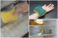Tiện tay cho miếng bọt biển vào ngăn đá, tủ lạnh tiết kiệm điện cả năm, tay chân bong gân giảm đau tức thì
