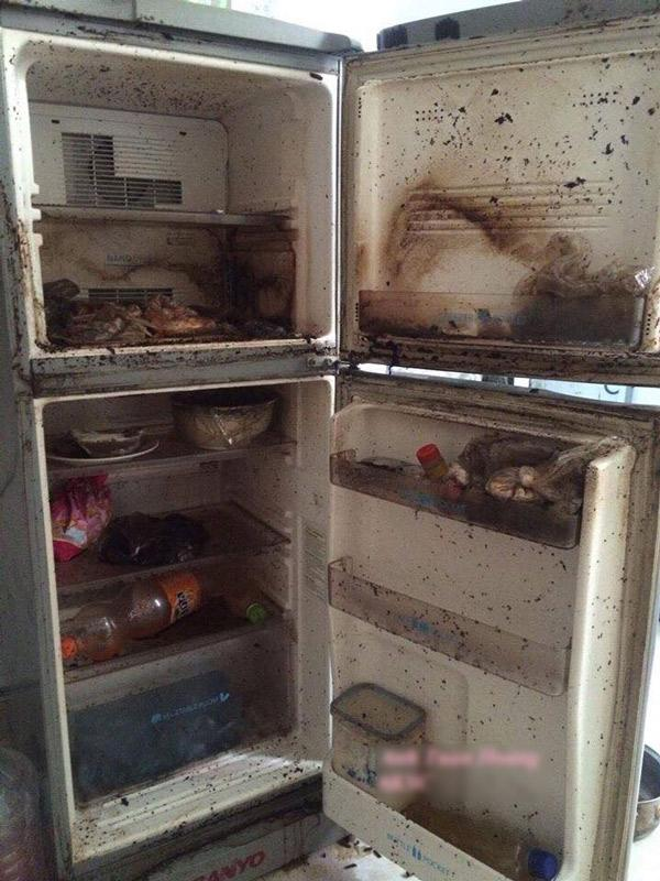 Làm sạch tủ lạnh vào thời điểm nào là tốt nhất để tránh biến chúng thành ổ vi khuẩn trong nhà?-1