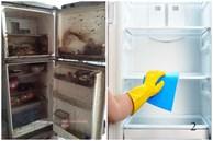 Làm sạch tủ lạnh vào thời điểm nào là tốt nhất để tránh biến chúng thành ổ vi khuẩn trong nhà?