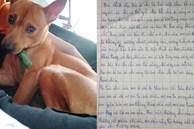 Bài văn tả con chó của cô bé tiểu học khiến tất cả bật cười vì 'có lúc bỏ nhà theo trai rồi'