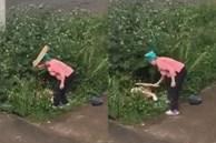 Bắt quả tang cặp đôi 'mây mưa' trong bụi rậm, người phụ nữ dạy đôi trẻ bài học nhớ đời