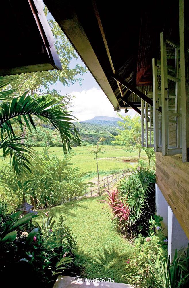 Nhà cấp 4 với thiết kế đẹp lãng mạn giữa cánh đồng lúa xanh tươi ở ngoại ô-2