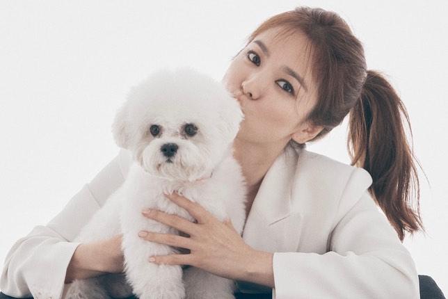 Song Hye Kyo lần đầu xuất hiện sau tin đồn chồng cũ có người yêu mới, nhìn biểu hiện là biết chẳng còn thiết tha gì Song Joong Ki-1