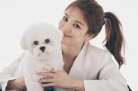 Song Hye Kyo lần đầu xuất hiện sau tin đồn chồng cũ có người yêu mới, nhìn biểu hiện là biết chẳng còn thiết tha gì Song Joong Ki