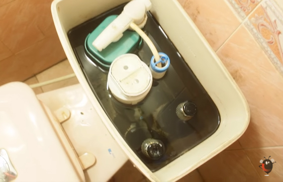 Ông xã cầm 2 chai bia vào nhà vệ sinh, tưởng làm điều gì mờ ám hóa ra lại giúp vợ tiết kiệm nước suốt cả mùa hè-2