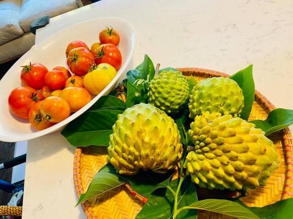 Ca sĩ Bằng Kiều khoe hoa quả thu hoạch trong vườn nhà, nhìn là mê-2