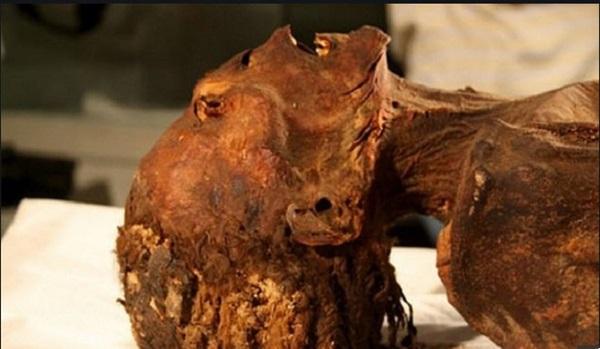 Vén màn bí ẩn xác ướp công chúa gào thét trong mộ cổ Ai Cập 3000 năm tuổi-1