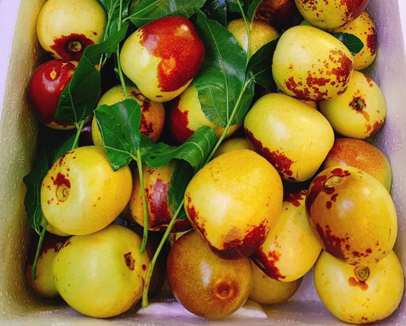 Đắt gấp 5 lần hàng Mỹ, loại quả Trung Quốc được ráo riết lùng mua-2