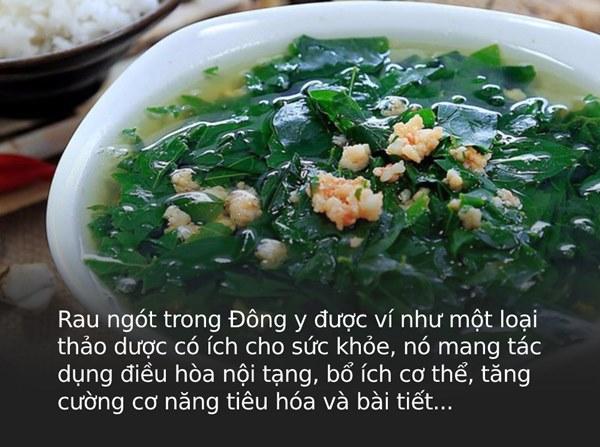 Là thảo dược quý trong Đông y nhưng có 3 nhóm người tuyệt đối không được ăn rau ngót vì sẽ gây hại nghiêm trọng cho sức khỏe-1