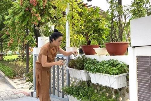 Ông xã đại gia tặng biệt thự 200m2, nghệ sĩ Kim Chi tự trồng rau ăn 5 bữa không hết-6