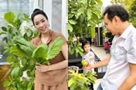 Ông xã đại gia tặng biệt thự 200m2, nghệ sĩ Kim Chi tự trồng rau ăn 5 bữa không hết