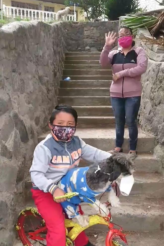Hình ảnh cậu bé cẩn thận đeo khẩu trang cho cả cún cưng để phòng dịch siêu đáng yêu gây bão MXH-2
