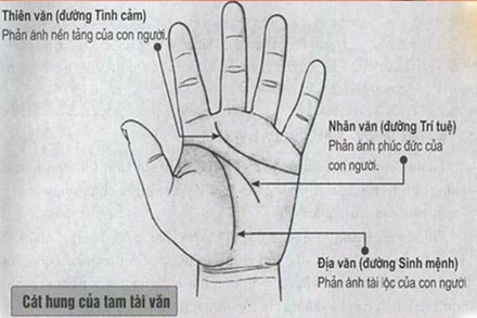 5 điểm cực hiếm trên bàn tay báo hiệu người khổ trước sướng sau