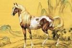 3 con giáp mang số đại cát, tuổi trẻ lận đận, về già hưởng phước lành-4