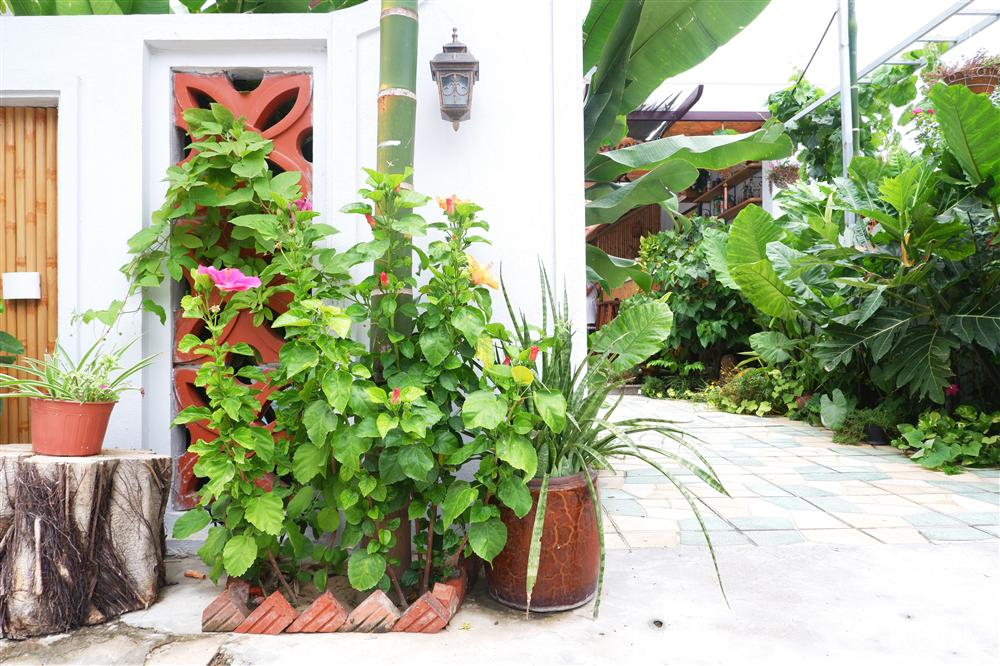 Ngôi nhà vườn xanh mát bóng cây do vợ chồng cùng nhau thiết kế ở Hội An-25