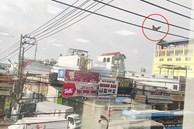 Bức ảnh chú gà trống ngồi chễm chệ trên đường dây điện cao chót vót khiến dân mạng tranh cãi nhiều nhất hôm nay 'liệu nó bay lên bằng cách nào?'