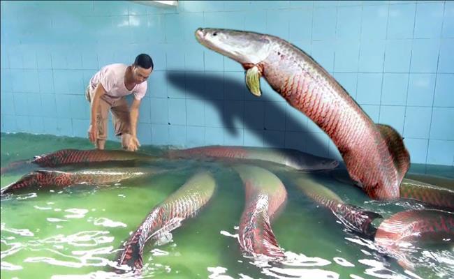 Thú chơi ngông của đại gia Việt: Chi tiền khủng rước quái thú về nuôi-5