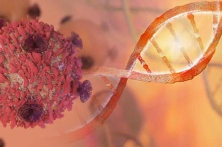 Không phải cứ mắc ung thư là chết: 4 loại ung thư có cơ hội được chữa khỏi trên 90% nếu như bạn ghi nhớ nguyên tắc này của bác sĩ
