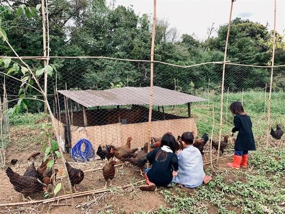 Lý Hải đưa cả gia đình về trang trại ở quê tránh dịch-2