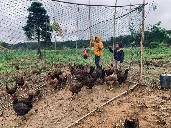 Lý Hải đưa cả gia đình về trang trại ở quê tránh dịch-5