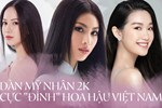 Hoa hậu Việt Nam 2020 hoãn tổ chức vì dịch Covid-19-2