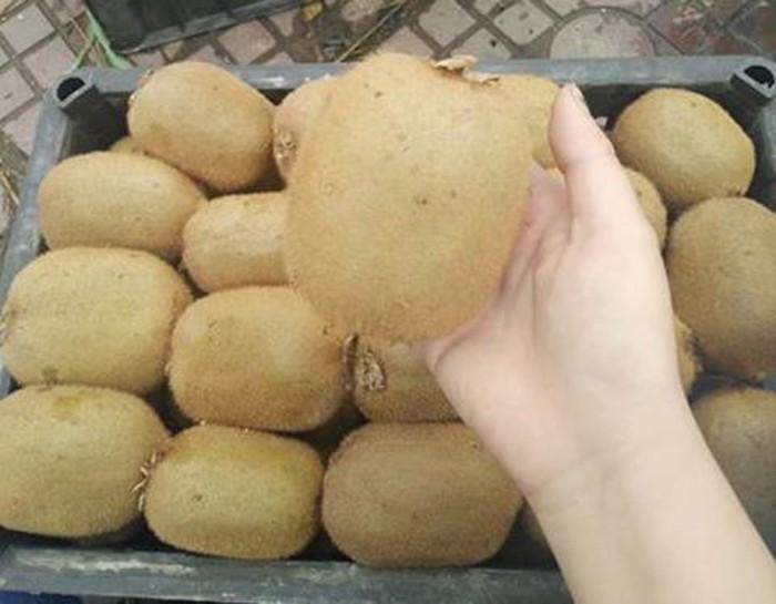 Kiwi Trung Quốc ngập tràn: Thay nhãn mác là đắt hàng-1