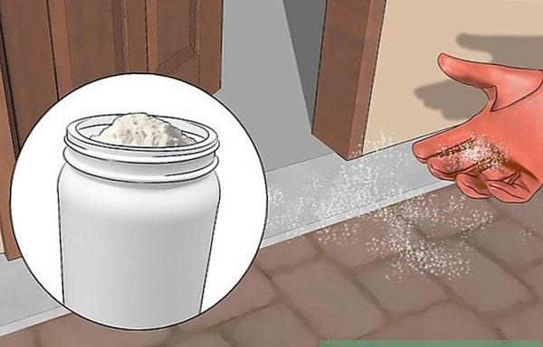 Chồng lấy 1 nắm bột giặt trộn với đường rồi để ở chỗ này, sáng hôm sau lũ kiến mất dạng sạch sành sanh-7
