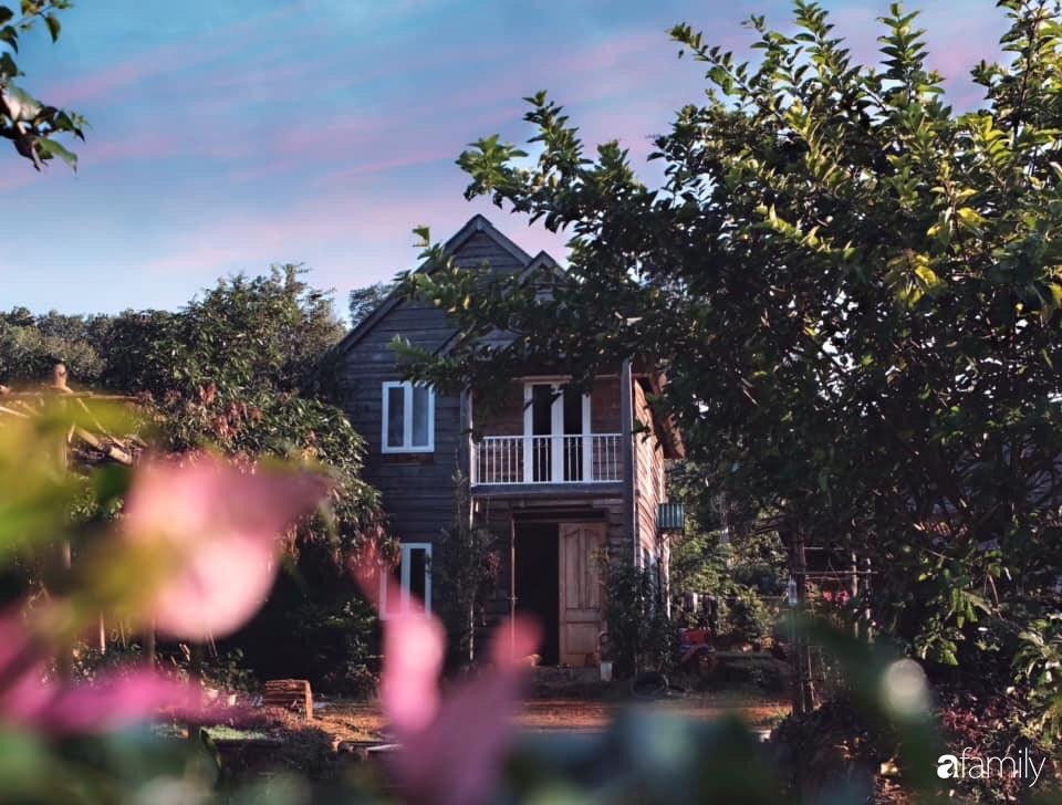 Khu vườn xanh tươi rộn ràng cây lá của cặp đôi quyết rời Sài Gòn tấp nập về núi rừng Tây Nguyên tìm chốn bình yên-6