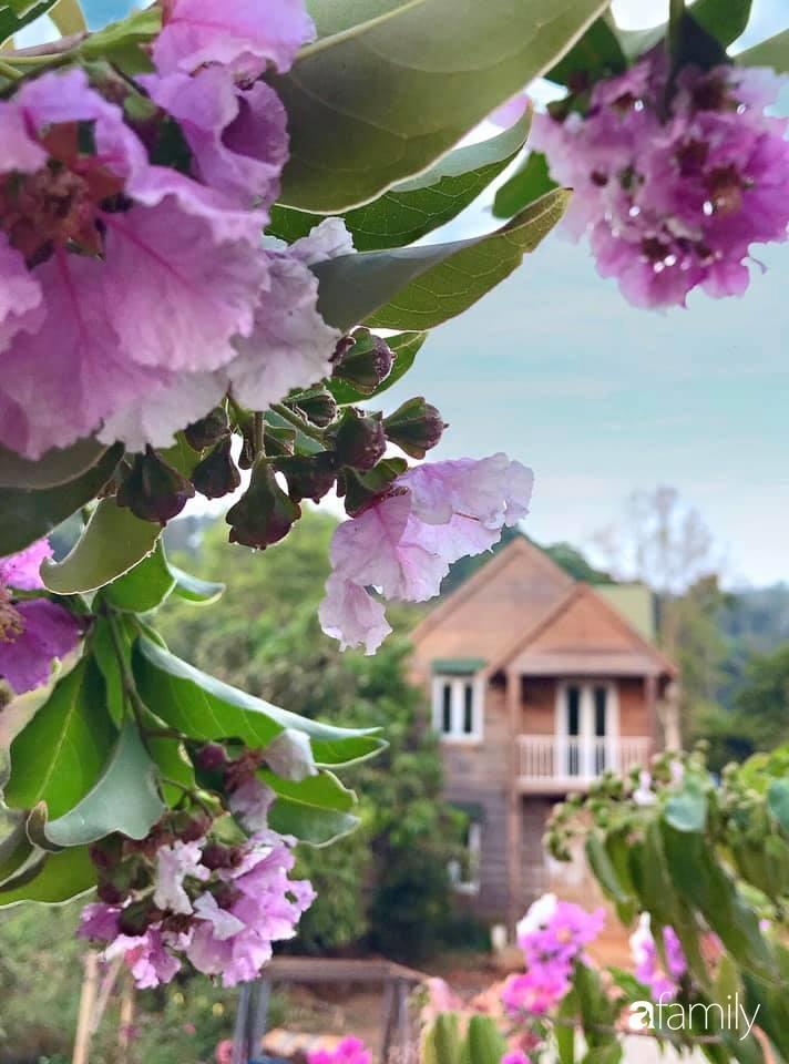 Khu vườn xanh tươi rộn ràng cây lá của cặp đôi quyết rời Sài Gòn tấp nập về núi rừng Tây Nguyên tìm chốn bình yên-22