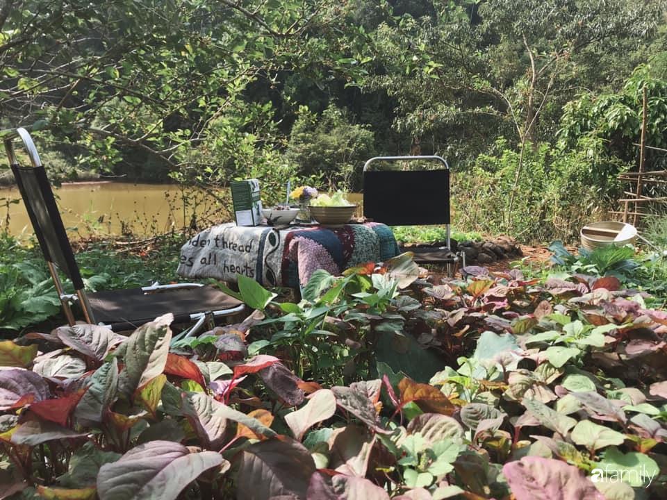 Khu vườn xanh tươi rộn ràng cây lá của cặp đôi quyết rời Sài Gòn tấp nập về núi rừng Tây Nguyên tìm chốn bình yên-29