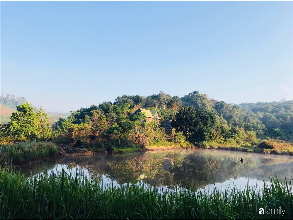 Khu vườn xanh tươi rộn ràng cây lá của cặp đôi quyết rời Sài Gòn tấp nập về núi rừng Tây Nguyên tìm chốn bình yên-33