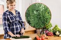 Bà bầu không nên ăn 7 loại rau này: Loại rau thứ 3 đứng đầu danh sách nguy hiểm nhất
