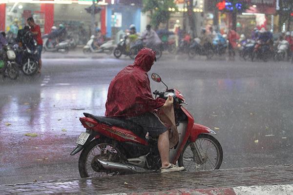 Dự báo thời tiết ngày 8/8, miền Bắc sáng có mưa rào-1