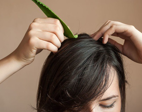 Học Hồ Ngọc Hà ủ tóc với nguyên liệu rẻ tiền, vừa dễ kiếm vừa chăm tóc đẹp đỉnh cao-10