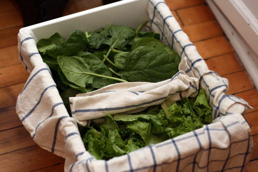 Chỉ bằng 1 tờ giấy, mách bạn mẹo bảo quản rau xanh trong tủ lạnh được lâu vào mùa dịch-4
