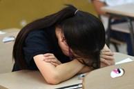 Thí sinh bị đình chỉ vì mang điện thoại vào phòng thi
