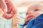 Xin tinh trùng thạc sĩ về mang thai, mẹ đồng tính suy sụp nhìn 2 con sau sinh