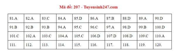 Đáp án đề thi tốt nghiệp THPT Quốc gia 2020 môn Sinh (24 mã đề)-4