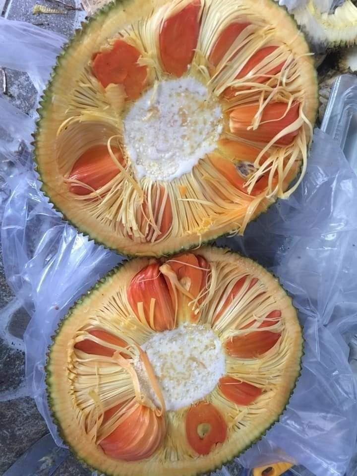 Lạ miệng mít ruột đỏ múi to dày, thơm ngọt giá 120.000 đồng/kg vẫn hút khách-3